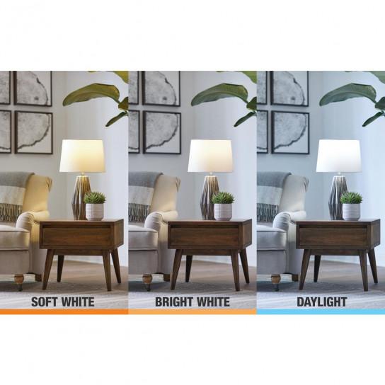 Ecosmart daylight bulb adjust color 1 box  393